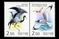 Почтовые марки - редкие птицы. Красавка. Черноголовый хохотун.
